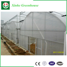 aquaponics,Multi Span Tunnel PE Plastic Film Hydroponic Systems Agricultural Commercial Greenhouse