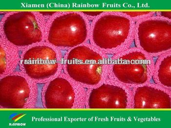 Red delicious Apple with good taste