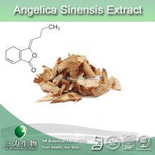 100% natural dong quai extract,angelica sinensis P.E, angelica root extract