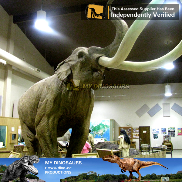 MY Dino-N158 Lifelike artificial robotic wild raptor animal model for tourist attractions decoration