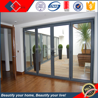 Folding Sliding Open Style and Industrial Supply Folding Tempered Glass Door