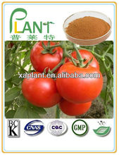Natural Pure spray dried dehydrated tomato powder