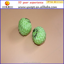YIWU artificial cherimoya fruit sugar apples for decoration