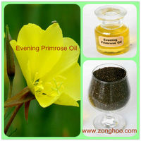 evening primrose oil brands
