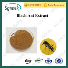 High quality black ant extract, Polyrhachis vicina roger powder with best price