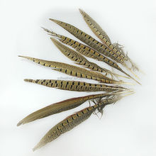 High Quality Cheap Real Natural Color Ringneck Pheasant Tail Feather
