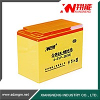 strong power long life 12v lithium ion car battery