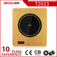 Buy 1000W Gift Tea Cooker MINI Induction Cooker in China on ...