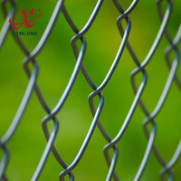 Home Garden DIY Chain Link Fence