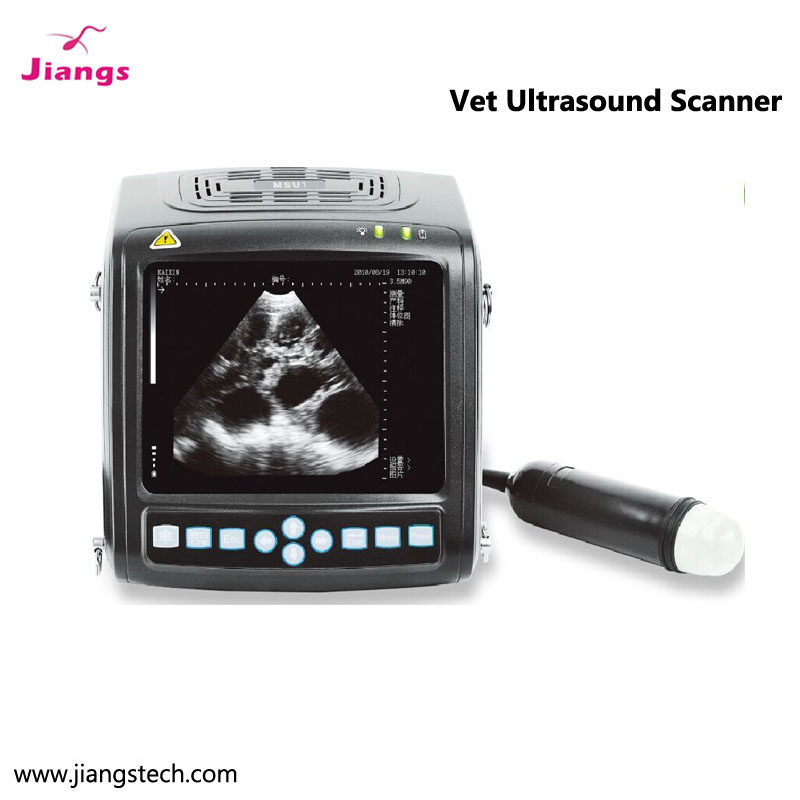 High sensitivity/convenient Veterinary equipment animal ultrasound diagnostic instrument for dog,cat,cattle,sheep