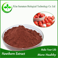 High quality 100% natural hawthorn berry extract
