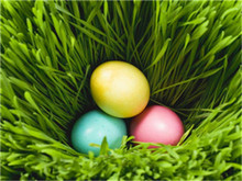 High definition colorful egg decorative 3d christmas picture