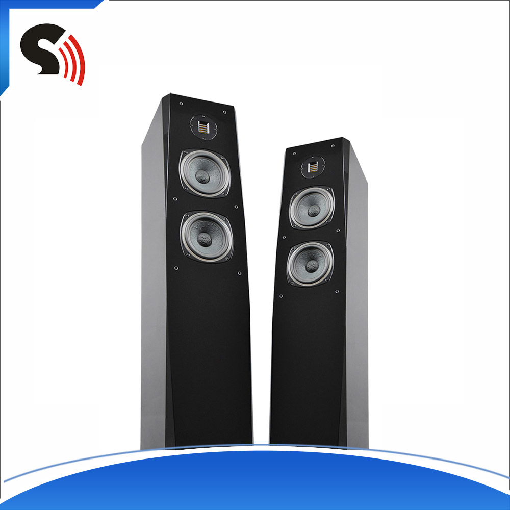 Black Professional Floor Home Theater DJ Sound System Box