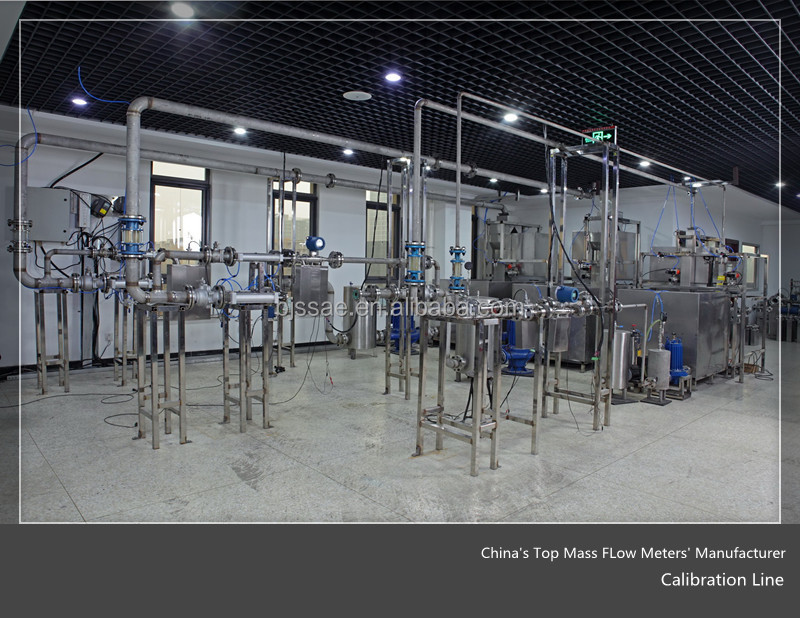 China's Top DMF-Series Mass Flow Meter Coriolis Manufacturer