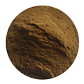 Tarragon Leaf Extract Powder With Our Own Factory