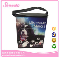 PET beer cooler plastic bag for picnic/travel /camping
