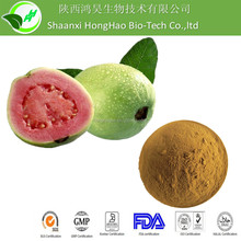 Organic Dehydrated Guava Juice Powder/ guava juices frozen concentrate