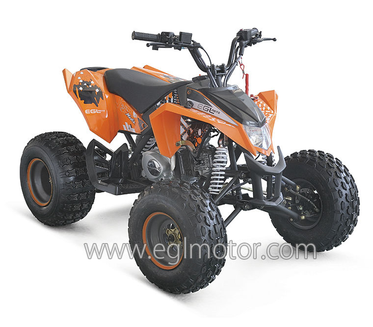 New CE Mini ATV 125cc semi-auto sports QUAD