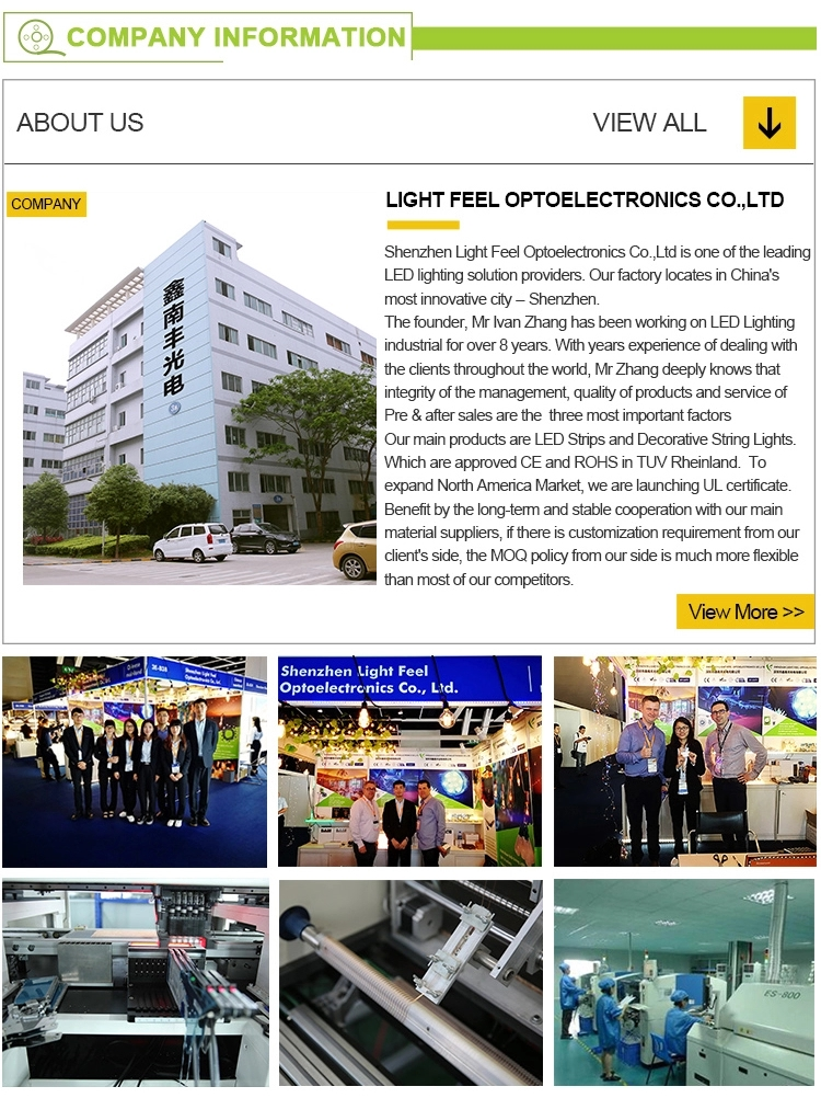 LF - Hot sell China Waterproof pool light 12v 24v RGB led flexible IP68 led building outline Neon light