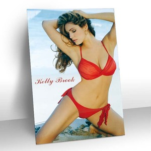 Hot selling product of 3d picture, sexy girl with bikini picture