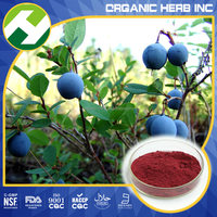 Bilberry Leaf Powder Bilberry Anthocyanins 25% UV HPLC