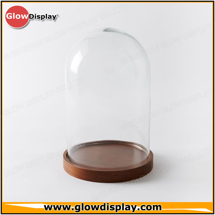 Wood Base Acrylic Dome Cloche Display