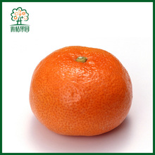High quality natural mandarin orange baby for baby