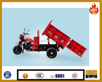 Hydraulic tipping bucket 300cc motor tricycle with lift system cargo tricycle