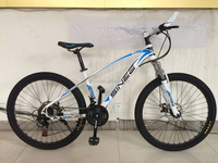 carbon mountain bike