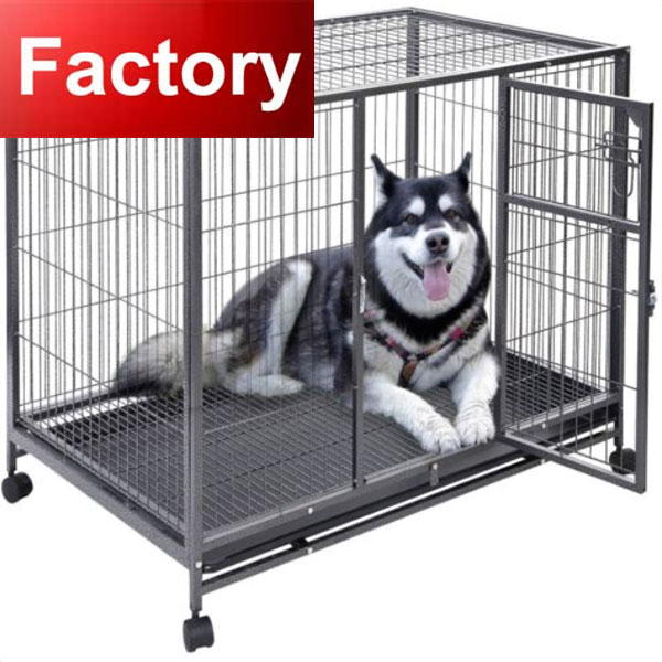 galvanized metal dog house 10x10x6 ft direct manufacture