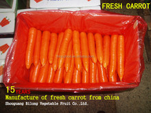 2017 New Crop Chinese Fresh Carrot