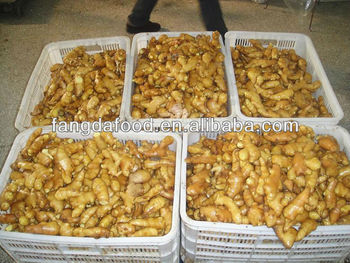 2014 Crop Fresh Ginger & Air-dried Ginger ( Meet Eu quality)