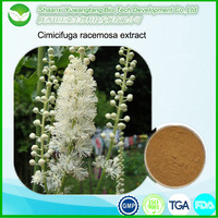Free sample high quality Cimicifuga racemosa extract/ Black Cohosh Root powder