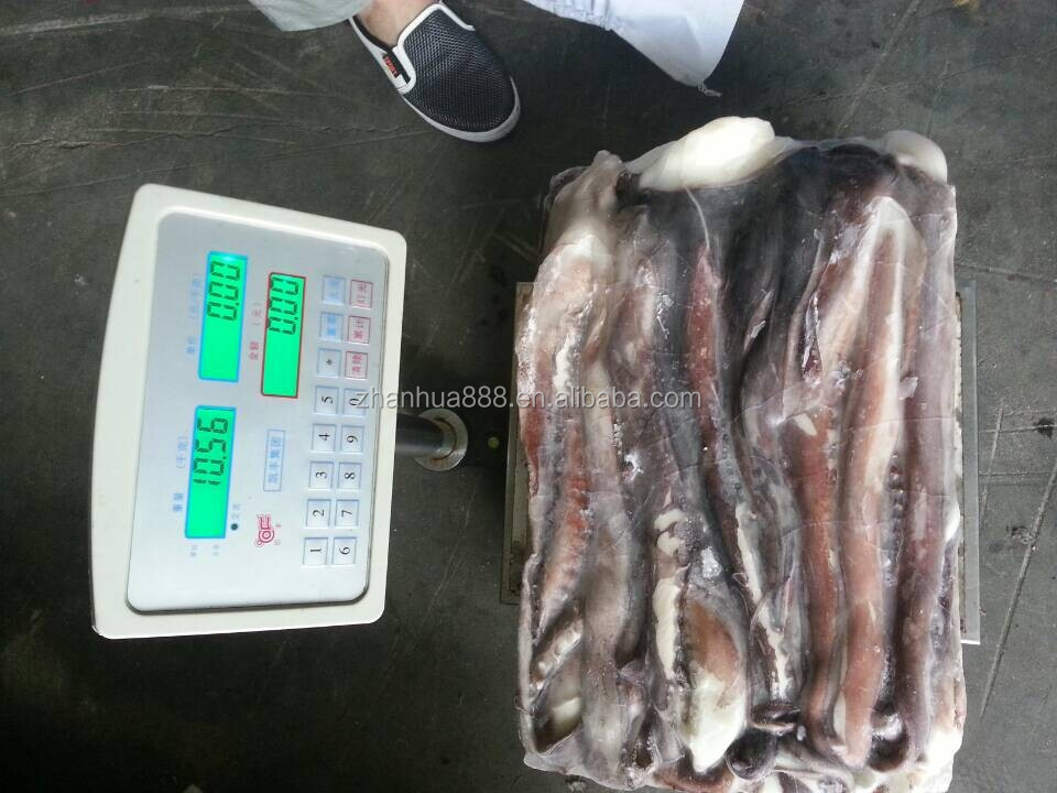 Seafood Wholesales Frozen Peru Giant Squid Tentacle for Sale
