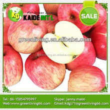 Bulk Apples Whole Sale