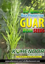 Guar Seeds for sowing