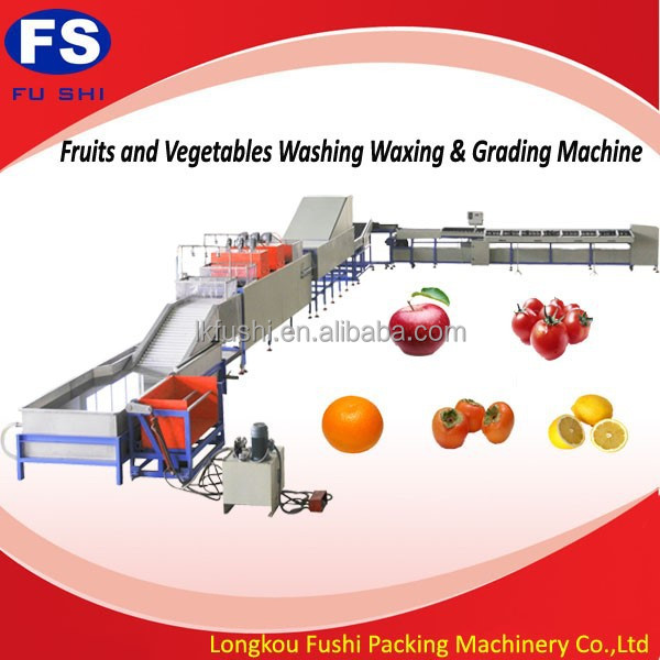 fruit washine waxing and selection line/fruit & vegetable processing machines
