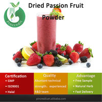 Fruit Juice Powder/Fruit Powder/Dried Passion Fruit Powder