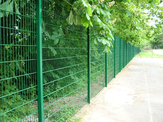 Cheap ornamental double loop wire fence for sale buy