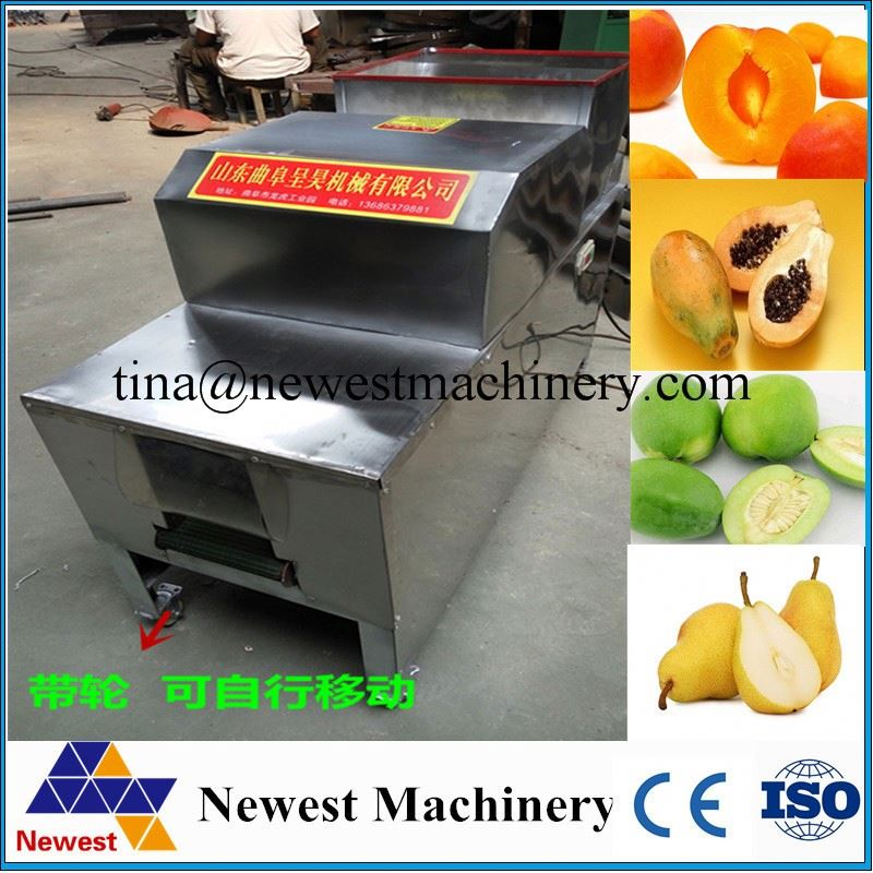 Full stainless steel fruit and vegetable cutting machine/apple pitting and half cutting machine/fruit seed pitting machine