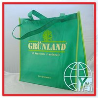 PVC Cheap Promotional Paper Boutique Bags