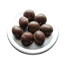 2017 new crop 140 <strong>grains</strong>/kg Beijing Chestnuts