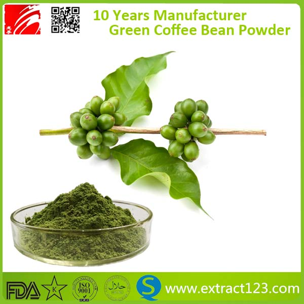 Chlorogenic acid 50% green coffee bean extract powder
