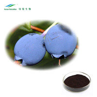 China Supplier Fruit Powder Bilberry Extract 25% Anthocyanin