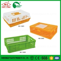 Livestock farming corrugated plastic fruit crate, cage for poultry transport, chicken layers