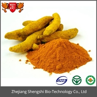 Herbal plant curcumin extract Turmeric powder