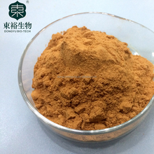 Oem Service China Famous Green Sweet Tea Extract for green tea pills