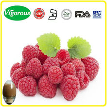Free sample Raspberry Extract/Raspberry Extract powder/Rubus Chingii Hu Raspberry ketone