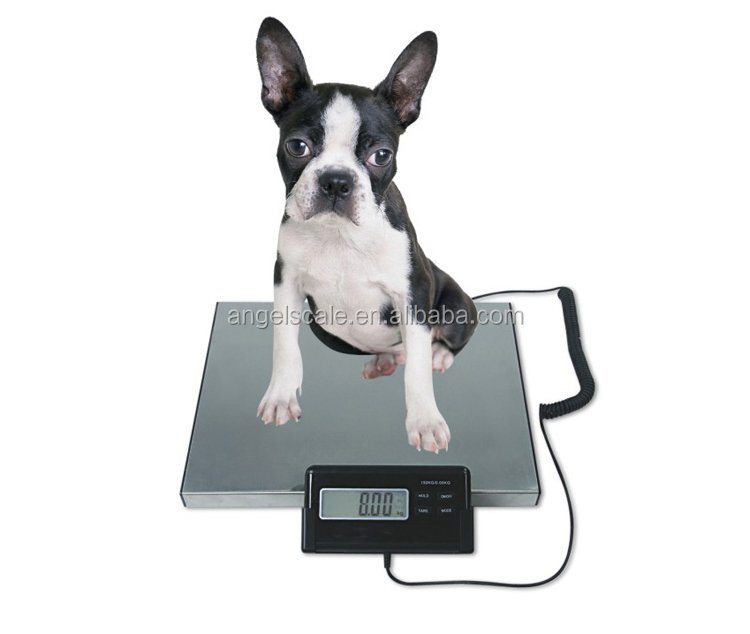 electronic weighing scale postal floor weight digital pet scale 200kg 300kg