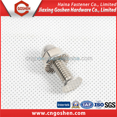 Stainless Steel flat head carriage bolts and nuts